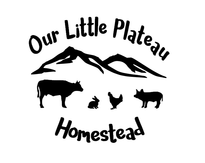 Our Little Plateau Homestead